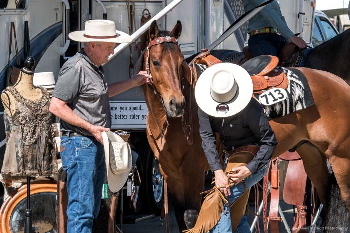 Tack at your Fingertips - Horseman's News
